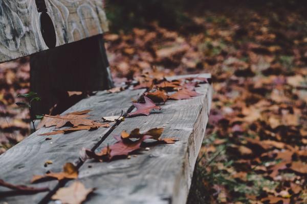Trauermonat November: Wie Senioren Trost erhalten